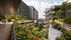 Learn all about Singapore's award-winning Khoo Teck Puat Hospital in our interview with the project's chief architect, Chris Johnston. Healthcare Architecture, Healthcare Design, Biophilic Architecture, Landscape Architecture, Green Architecture, Architecture Design, Chief Architect, Hospital Design, Roof Design