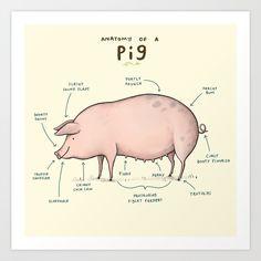Anatomy of a Pig Art Print
