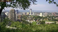 Hamilton in top 3 of best places in Canada for women to live