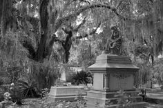These awe inspiring burial grounds belong on your bucket list. From witches and vampires to voodoo priestesses and phantom lights, step inside the world's most haunted cemeteries. Real Paranormal, Paranormal Experience, Spooky Places, Haunted Places, Haunted Houses In Georgia, Travel Around The World, Around The Worlds, Bonaventure Cemetery, Ghost World