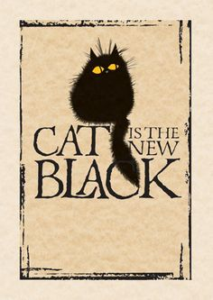 black cat - Tap the link now to see all of our cool cat collections!