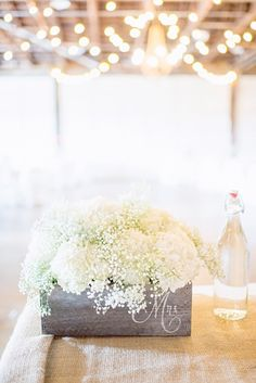 baby's breath and flower boxes!