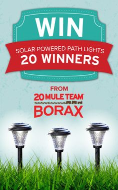 """Enter to WIN solar-powered LED path lights for your yard in the """"All-Natural"""" sweepstakes from 20 Mule Team Borax! #giveaway"""