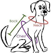 Un modelo simple capa del perro. Cuando usted tiene un galgo y otros perros que necesitan calor adicional cuando su frío afuera, esto será muy útil!