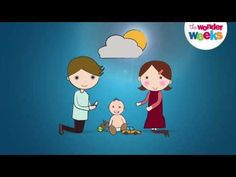 The Wonder Weeks. An awesome app for tracking babies development. - Worldwide Bestseller - Empowering parents around the Globe
