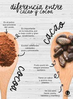 Diferencias entre cocoa y cacao Video Rezept Chocolat Recipe, Healthy Tips, Healthy Recipes, Healthy Food, Baking Classes, Chocolate Bark, Learn To Cook, Food Hacks, Mexican Food Recipes
