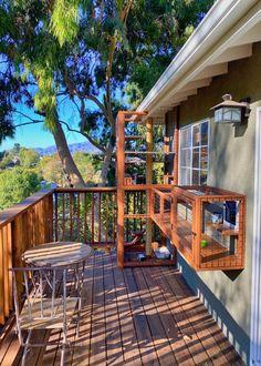 Deck Enclosures, Outdoor Cat Enclosure, Candle Heater, Cat Castle, Cat Steps, Steps Design, Foster Kittens, Cat Room, Houses