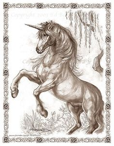 Unicorn of the Willow by Ed Beard Jr Unicorn Fantasy Myth Mythical Mystical Legend Licorne Enchantment Coloring pages colouring adult detailed advanced printable Kleuren voor volwassenen coloriage pour adulte anti-stress kleurplaat voor volwassenen Line Art Black and White