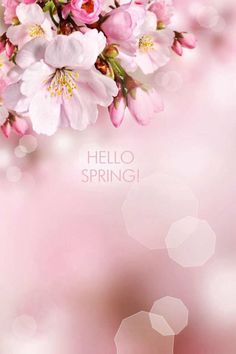 Hello Spring with flowers ....