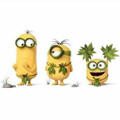 Minionland is a social visual discovery tool that you can use to find all things related to Minions and Despicable Me. Minions Friends, Minions Images, Cute Minions, Minions Despicable Me, Minions Quotes, Minions 2014, Minion Humor, Minion Friday, Geeks