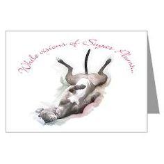 From Greyhound Adoption Service store