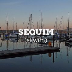Get yourself to this day-trip destination from #hoodcanal #explorehoodcanal #sequim #wildsideWA #olympicpeninsula #instagood #love #cool #travel #nature #photooftheday #art #amazing  #beautiful #water