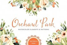 Orchard Park Watercolor Florals by Denise Anne on @creativemarket