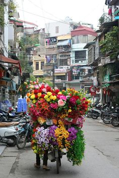 Satin flowers on a bike in Hanoi, Vietnam Satin Flowers, Beautiful Flowers, Exotic Flowers, Purple Flowers, Beautiful World, Beautiful Places, Vietnam Voyage, Foto Art, Flower Market