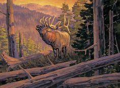 A339075066:The Conquest-Elk Painting by T. Hilscher