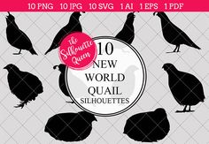 New world quail Silhouette Vector includes PNG files with transparent backgrounds at The PNGs are approximately 10 inches at it's widest point. Bird Silhouette, Black Silhouette, Silhouette Vector, Silhouette Studio, Animal Cutouts, Wine Logo, Cricut, Best Friend Tattoos, Wedding Crafts