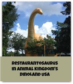 A review of lunch at Restaurantosaurus in Walt Disney World's Animal Kingdom Park