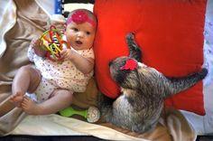 A lajhár és a kislány   Fotó: distractify.com