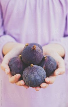 higos-Just for you Mauve, Lilac, Fig Recipes, Fresh Figs, Fig Tree, Kids Hands, Soft Summer, Shades Of Purple, Fruits And Vegetables
