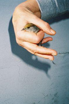 untrustyou:  Inès Berra Viola Trust, Studio, Studios, Studying