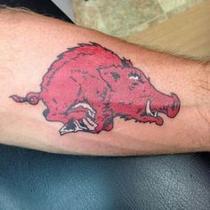 1000 images about razorback tattoo on pinterest for Tattoo fayetteville ar