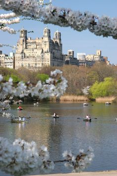 central park | new york | city | lake | boats | rowing | spring | architecture | blossom | nyc | travel | destination | place | holiday | bucket list