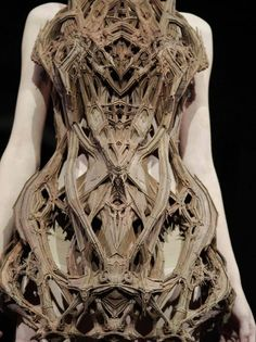 Fashion as Art - sculptural dress with intricate structure and symmetry, inspired by micro organisms; innovative 3D fashion // Iris Van Herpen
