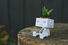 Succulentes planteur 3D Robot imprimé  Robbie le Robot planteur  Comment personnaliseront mignonne Robbie le planteur de robot de coiffer ses cheveu