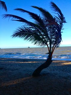Palm Cove Beach Australia, annaslifeinabag.wordpress.com
