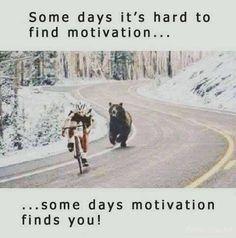 My lady bear motivates me...