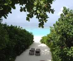 Whether you're planning a honeymoon, a romantic anniversary trip, or just want to dream, here are some of the world's most romantic destinations: enjoy! Romantic Holiday Destinations, Hamptons Decor, Budget Holidays, Vacation Trips, Vacation Travel, Most Romantic, Coastal Decor, Maldives, Places To Visit