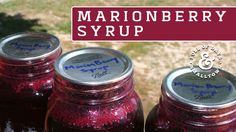 Marionberry syrup is perfect for topping waffles, dipping pork or flavoring kombucha and water kefir. Enjoy!