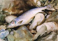 John Singer Sargent, Study of Salmon, watercolor over pencil on paper, c.1901, Private Collection
