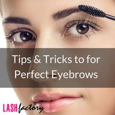 1000+ images about Brows on Pinterest