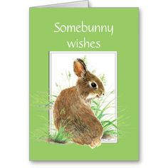 >>>Low Price Guarantee          	Somebunny Birthday Wishes, Cute Rabbit, Bunny Greeting Card           	Somebunny Birthday Wishes, Cute Rabbit, Bunny Greeting Card This site is will advise you where to buyShopping          	Somebunny Birthday Wishes, Cute Rabbit, Bunny Greeting Card lowest pri...Cleck See More >>> http://www.zazzle.com/somebunny_birthday_wishes_cute_rabbit_bunny_card-137593675324621870?rf=238627982471231924&zbar=1&tc=terrest