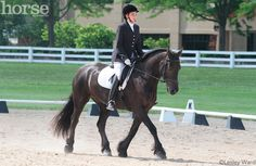 Lazy Dressage Horse: Practice these exercises to get your horse responsive and ready to move forward.