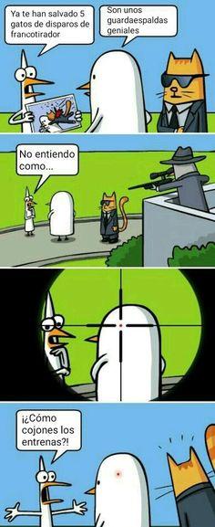 Estos gatos Cute Comics, Funny Comics, Funny Cartoons, Funny Jokes, Really Funny, Funny Cute, The Funny, Funny As Hell, Funny Photos