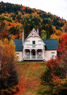 cozy cottage with fall foliage #fall #views