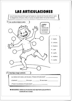 """Las articulaciones"" (Ficha de Ciencias Naturales de Primaria) Learning Activities, Kids Learning, Spanish Teacher, School Decorations, Body Systems, Hygiene, Halloween Activities, Spanish Lessons, Science Lessons"