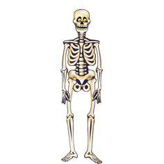 Billig stor dekoration til at hænge på døren, væggen eller i vinduet - Halloween Skelet Papfigur - Single. Hos MinTemaFest.dk
