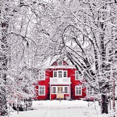 Christmas in Sweden comes with snow and traditions! Happy Holidays!