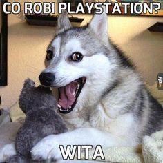 Co robi PlayStation? - obrazki Jeja.pl