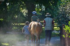 Gut Nisdorf, Kinder & Familienhotel in Mecklenburg Vorpommern - #BioHotel #Familie an der #ostsee Hotels, Am Meer, Animals, Baltic Sea, Kids, Animales, Animaux, Animal, Animais