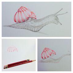 Candy Cane Snail. #snail #AndreasenArts #pencil