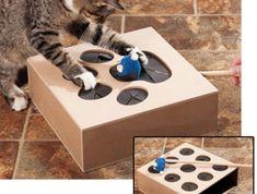 Whack A Mouse c'est le nouveau jouet qui rendra complètement fou votre matou ! Whack A Mouse c'est : un cube en bois, 9 trous, une souris et votre talent pour manier les nerfs de votre chat avec sub...
