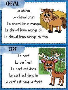 Lecture facile et répétitive - Les animaux - French Reader on animals