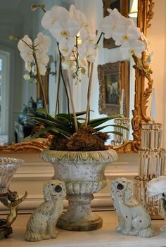orchids are always in order in a great urn Valk Chuah Enchanted Home Casa Mix, Non Plus Ultra, Vibeke Design, Staffordshire Dog, Orchid Arrangements, Enchanted Home, Tuscan House, French Decor, Traditional House