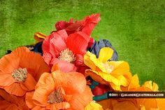 Flores de tusa