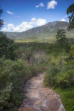 Hapiness walk. #mountain #forest #chapada