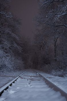 "stephiramona: ""Still waiting "" Winter Magic, Dark Winter, Winter Snow, The Long Dark, Winter Scenery, Dark Photography, Dark Places, Aesthetic Pictures, Mother Nature"